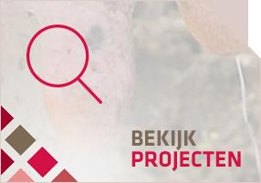 SubBekijkProjectenBtn